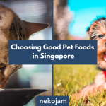 how to choose good pet food in singapore featured image