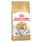 Royal Canin Adult Norwegian Forest Dry Cat Food, 2kg