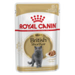 Royal Canin Adult British Shorthair in Gravy Wet Cat Pouches, 85g