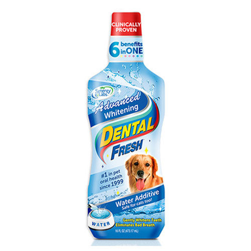 Synergy Labs Dental Fresh For Dogs Cats