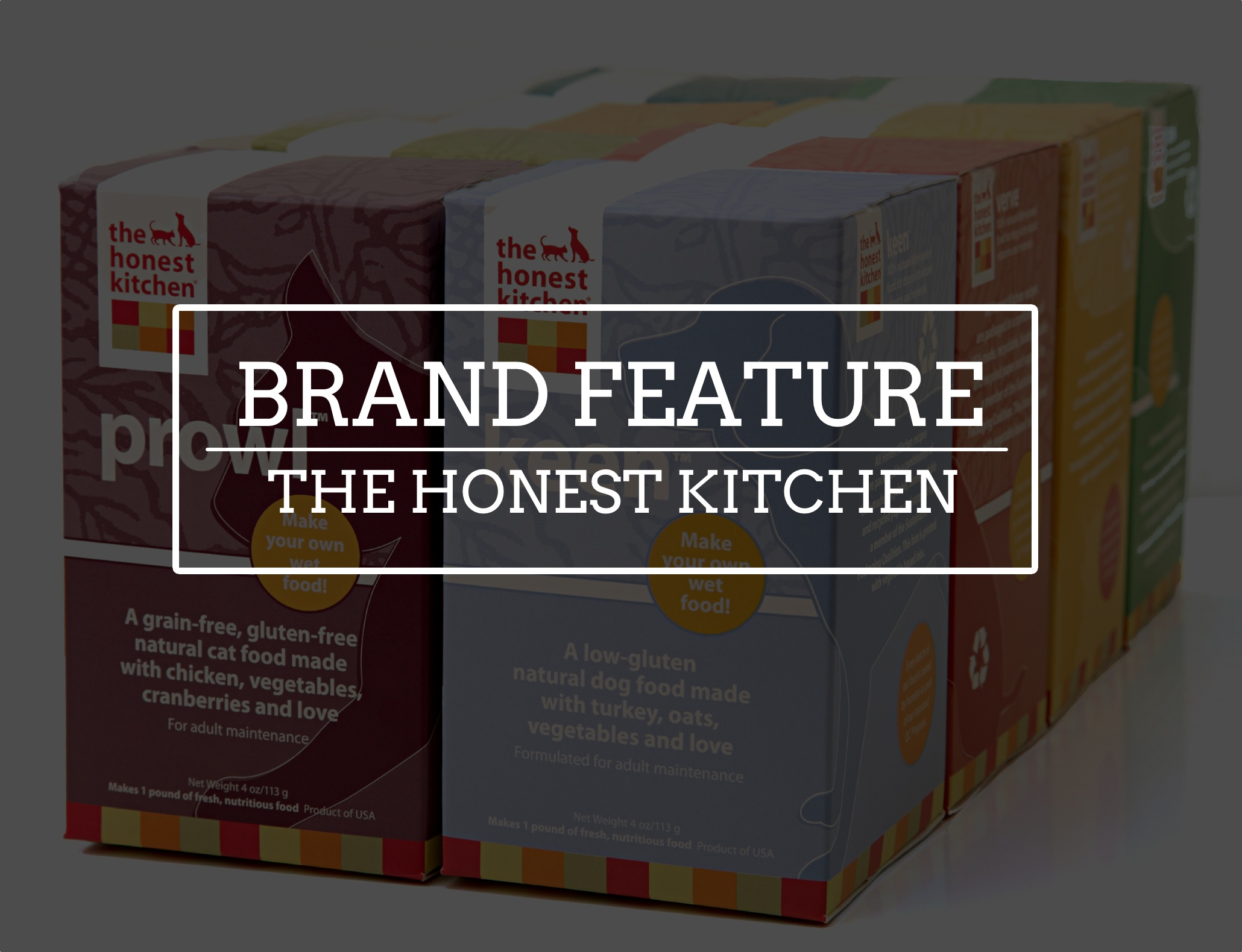 the honest kitchen dehydrated dog cat food singapore