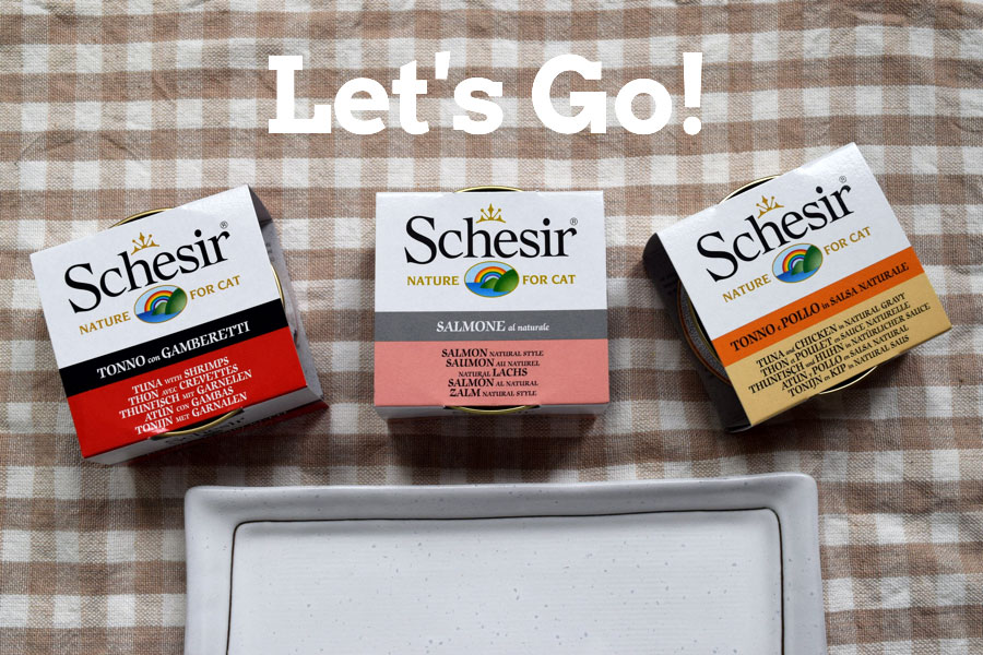 Schesir-Cat-Food-Singapore-Lets-Go