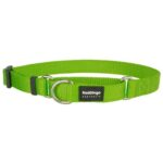 Red Dingo Martingale Half Check Dog Collar in Lime Green