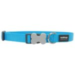 Red Dingo Classic Dog Collar in Turquoise