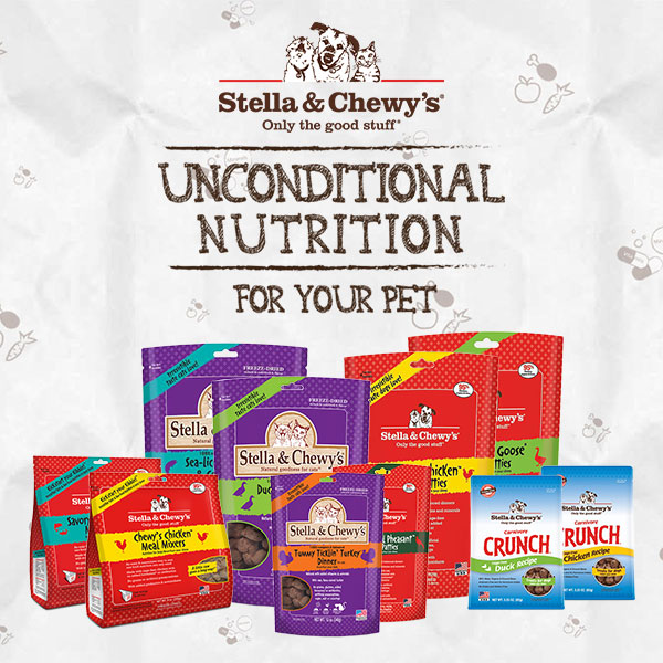 Stella & Chewy's Pet Food Launch in Singapore