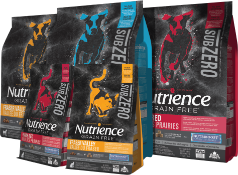 Nutrience Dry Dog Food Review And Comparison Nekojam Com