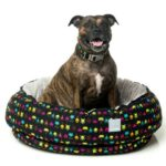 FuzzYard Reversible Dog Bed (Space Raiders)