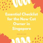 Essential Checklist for the New Cat Owner in Singapore
