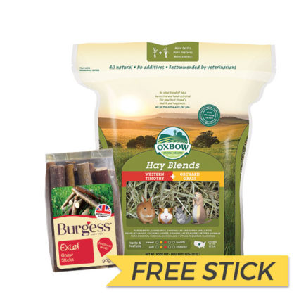 FREE BURGESS STICK: Oxbow Western Timothy & Orchard Grass Hay Blend, 40oz