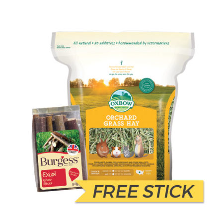 FREE BURGESS STICK: Oxbow Orchard Grass Hay, 40oz