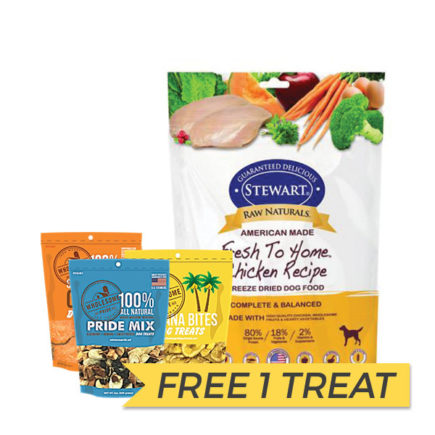 FREE TREAT: Stewart Raw Naturals Freeze Dried Chicken Nuggets, 12oz