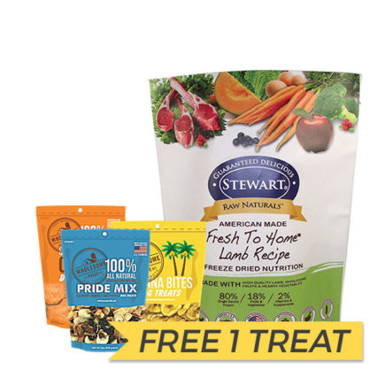 FREE TREAT: Stewart Raw Naturals Freeze Dried Lamb Nuggets, 12oz