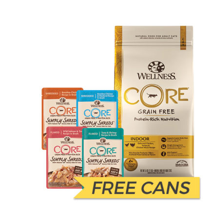 FREE CANS: Wellness Core Grain Free Indoor Dry Cat Food