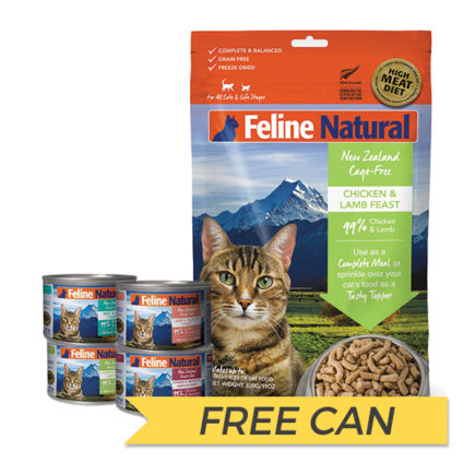 FREE CAN: K9 Natural Feline Freeze Dried Chicken and Lamb Feast