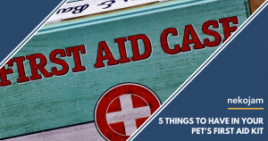 five Things to Have in Your Pet's First Aid Kit featured image