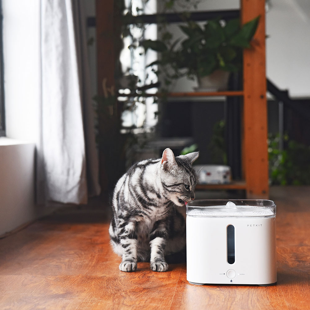 Petkit Eversweet Smart Drinking Fountain