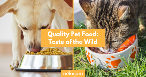 quality pet food taste of the wild featured image