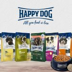 happy dog featured image