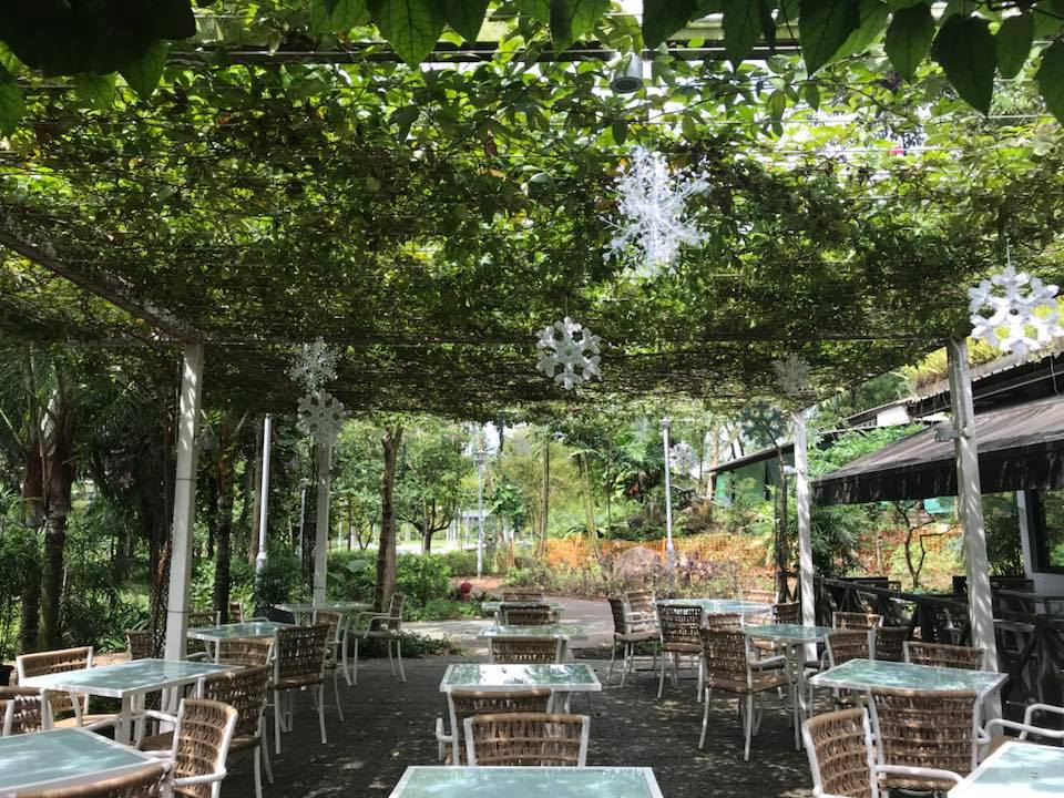 canopy garden dining patio facebook dog friendly cafes that are great for dates