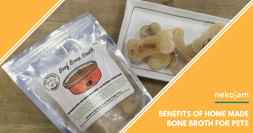 The Benefits of Home Made Bone Broth for Dogs and Cats featured image