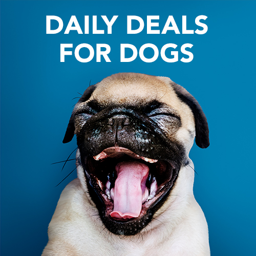 Daily Deals for Dogs