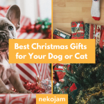The Best Christmas Gifts for Your Dog or Cat featured image