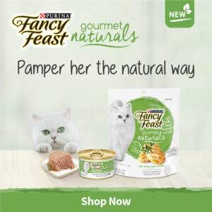 nekojam purina fancy feast launch