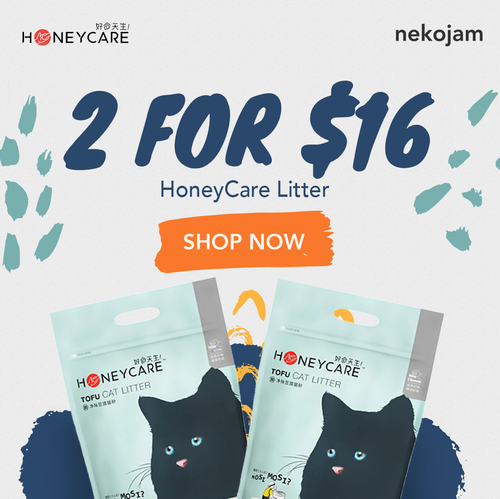 honeycare cat litter 2 for $16 cat banner