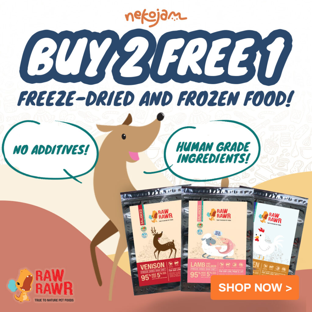 raw rawr buy 2 free 1 promo (square)