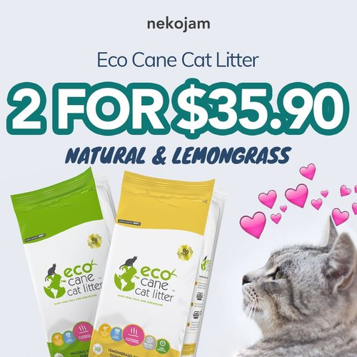 eco cane cat litter promo resized