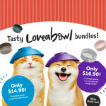 loveabowl launch promotion (square) resize