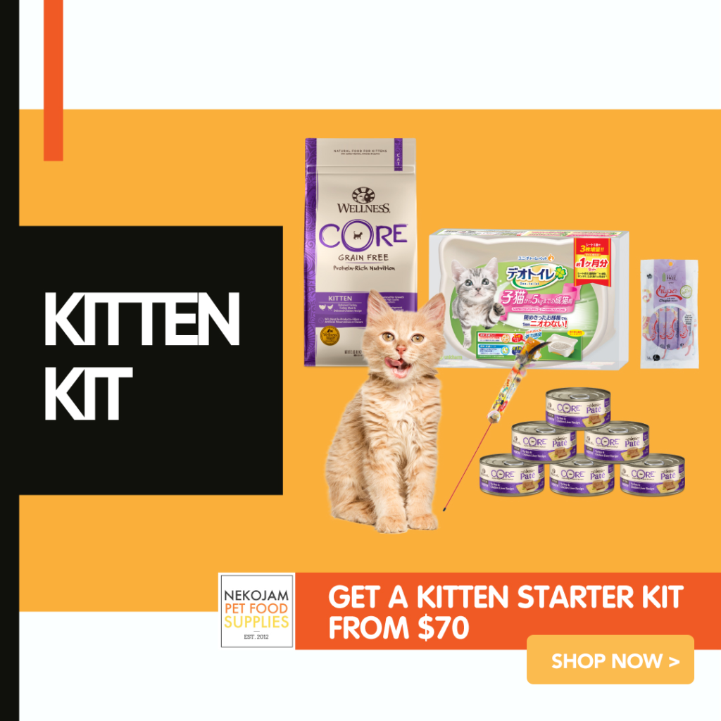 nekojam kitten essentials bundle