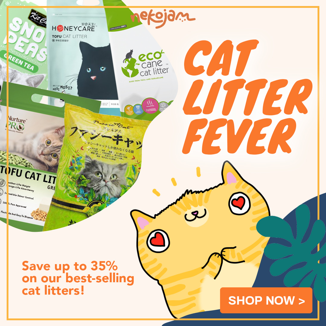 cat litter fever promo
