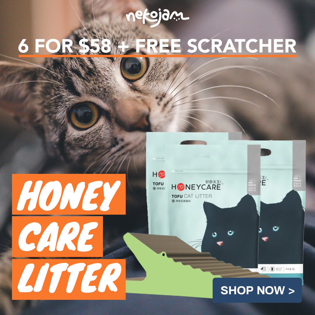 honey care cat litter and free scratcher promo