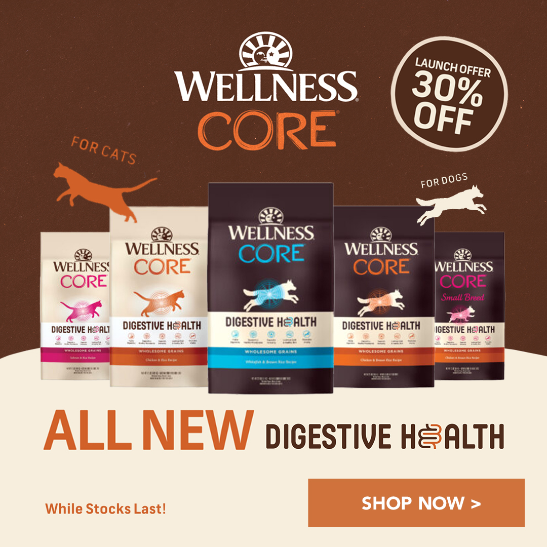 wellness core digestive health new banner square